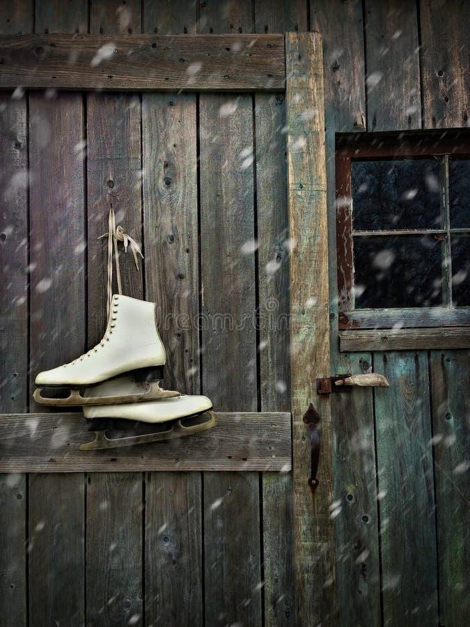 Gammala skridskor som hänger på ladugårddörr arkivfoton