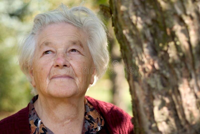 gammalare parkkvinna royaltyfri foto