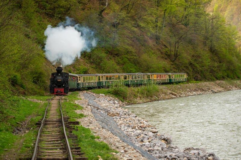 Gammalt ångadrev i bergen av Rumänien, Maramures län royaltyfria foton