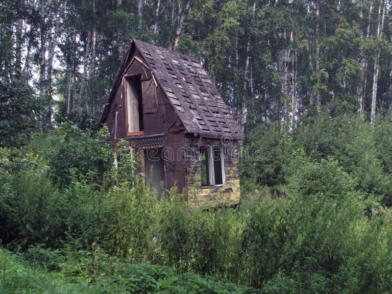 Gammalt övergav det gråa förstörda huset med ett skarpt tak som omgavs av en björkskog royaltyfri foto