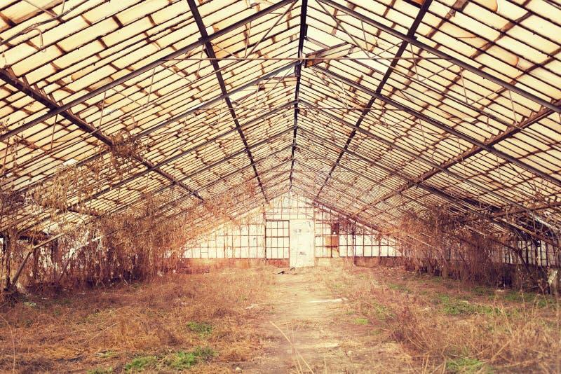 gammalt övergivet drivhus arkivbilder