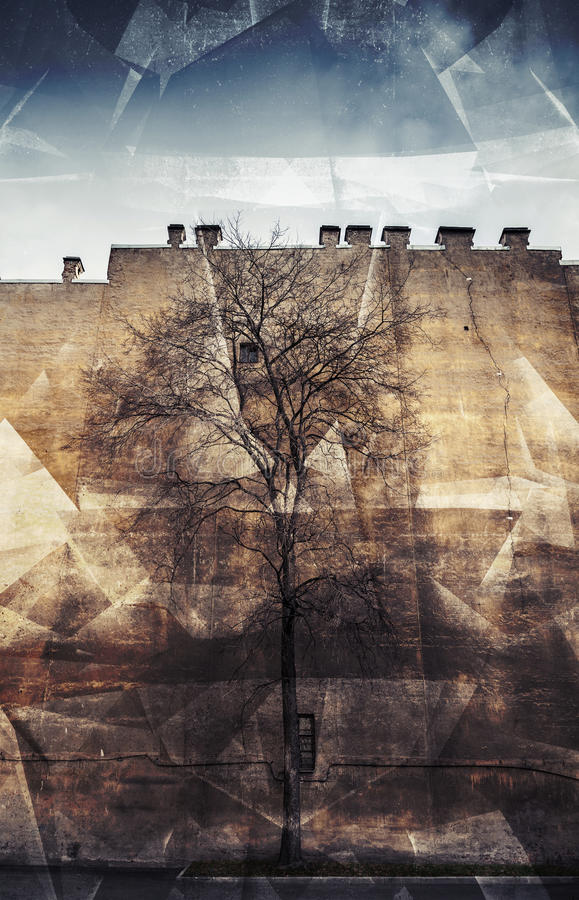 Gammalt avlövat träd på gammal gul väggbakgrund, fotocollage royaltyfri illustrationer