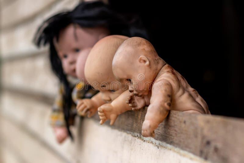 Gammalt behandla som ett barn - dockan som ser ut ur träväggen royaltyfri bild