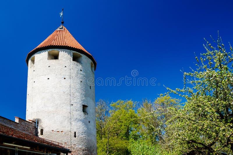 Gammalt cylindriskt torn med det röda belade med tegel taket arkivbild