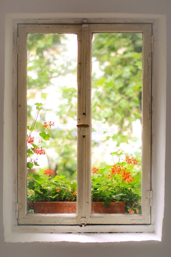 gammalt fönster för hus royaltyfri bild