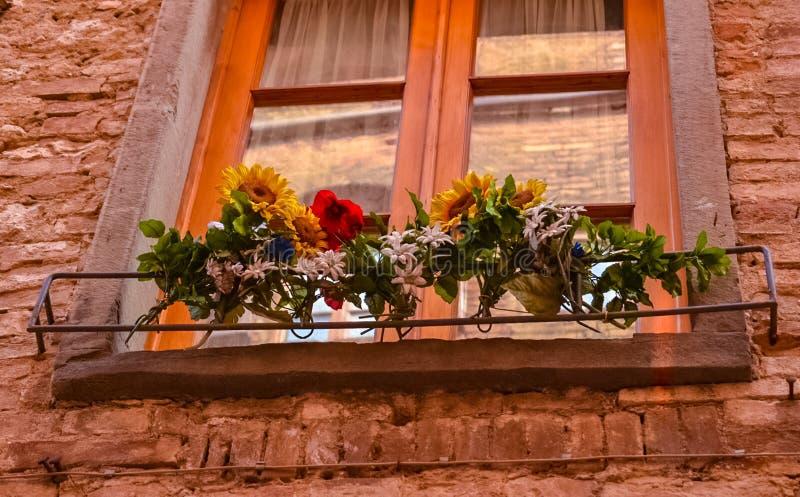 Gammalt f?nster med blommor royaltyfria bilder
