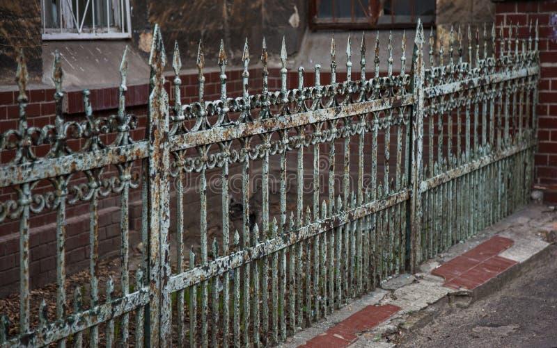 Gammalt falskt järngjutjärnstaket med skarpa spjut och sprucken målarfärg ibland Vitt smutsigt övergett staket som bröt fotografering för bildbyråer