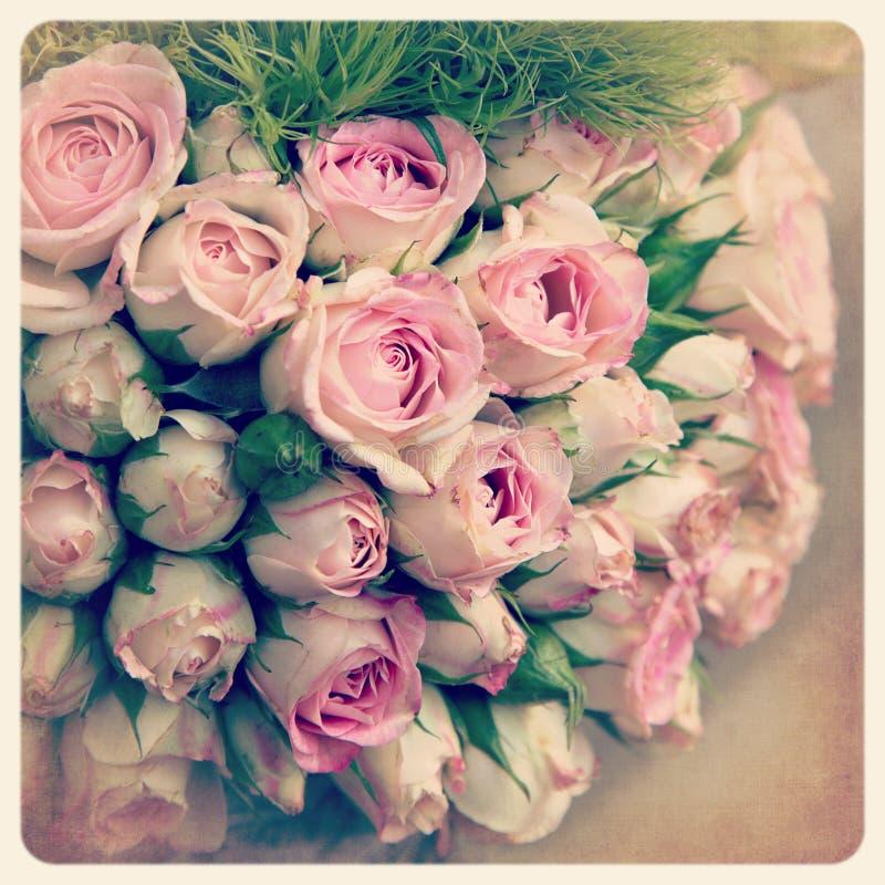 Gammalt foto för rosa rosebuds arkivfoto