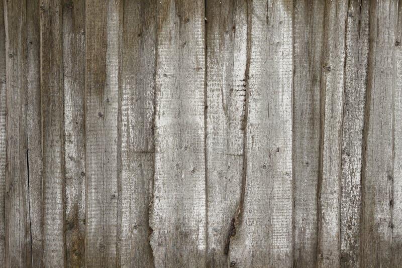 Gammalt grå färgstaket som göras av trä med vita målarfärgslaglängder royaltyfri foto