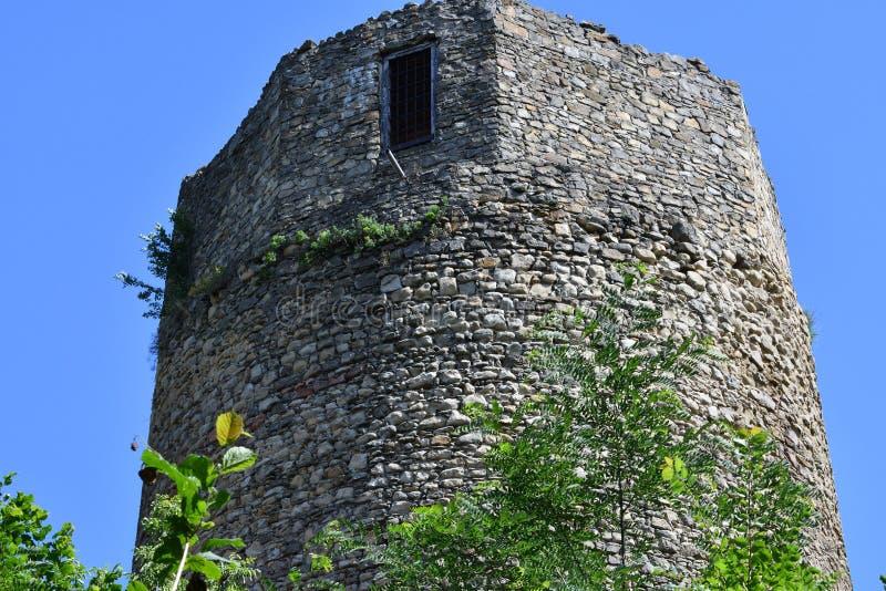 Gammalt historiskt torn Czchow Polen arkivbild