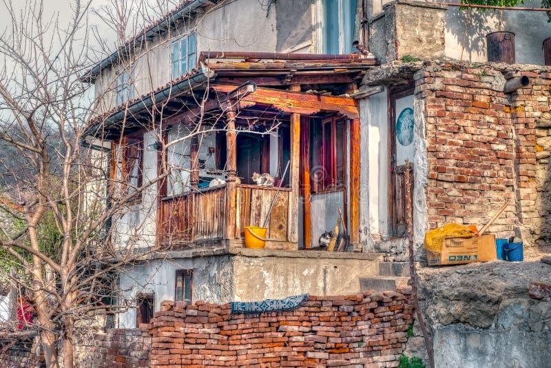 Gammalt hus i degradering med katter arkivbilder