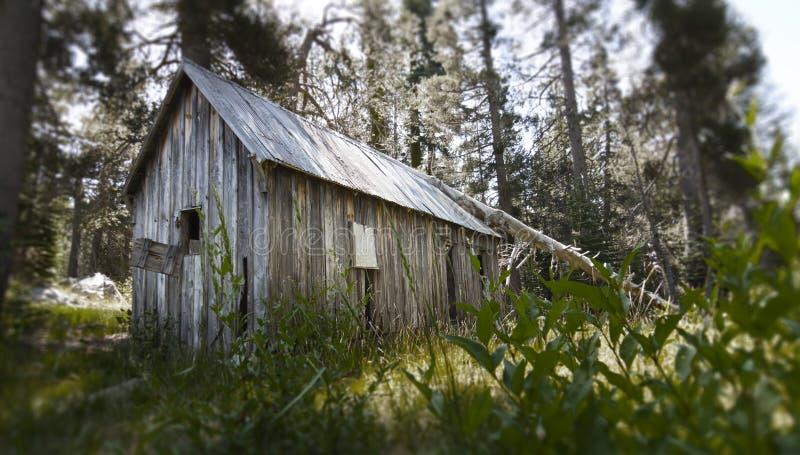 Gammalt hus i träna arkivfoto