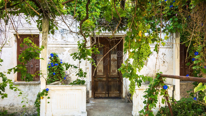 Gammalt hus som är bevuxet med druvor och blommor royaltyfri bild