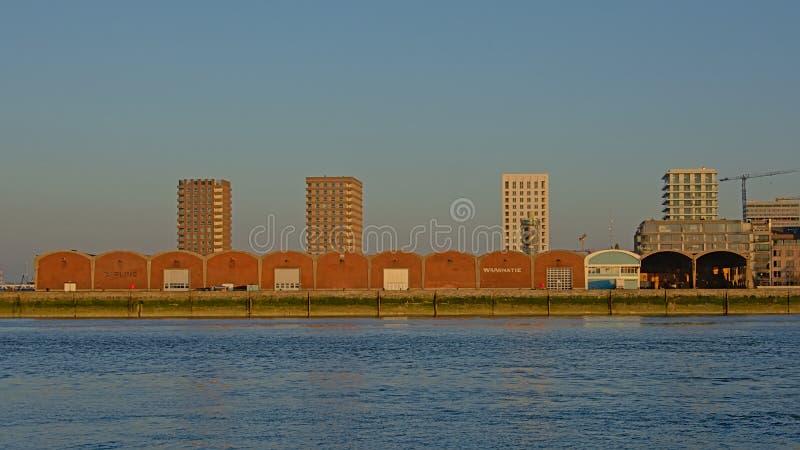 Gammalt lager och nya residentailskyskrapor i Anwerp royaltyfri fotografi