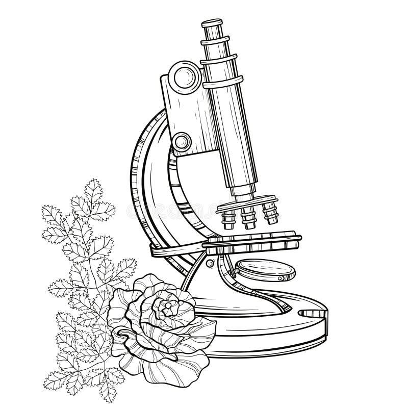 Gammalt mikroskop för vektor med rosor Dragen illustratio för tappning hand royaltyfri illustrationer