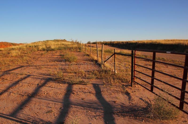Gammalt nötkreatur fäktar i Texas royaltyfri foto