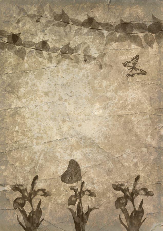gammalt papper för fjärilsblomma stock illustrationer