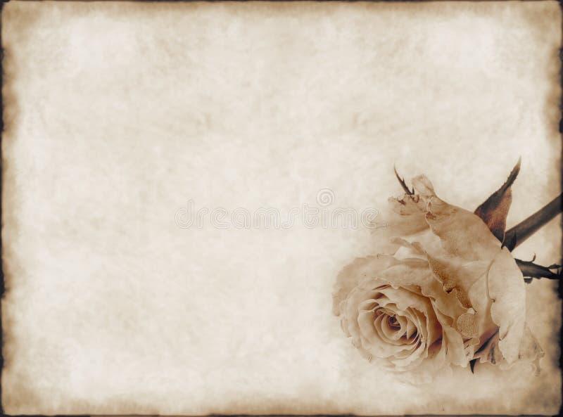 gammalt papper steg royaltyfri fotografi
