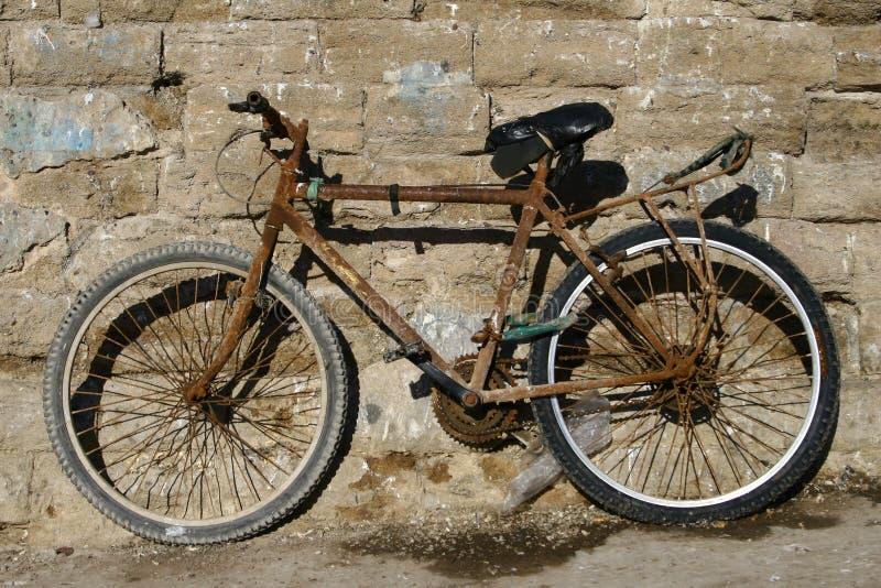 gammalt rostigt för cykel royaltyfri bild