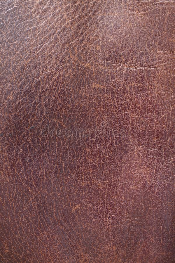 Gammalt skrapat läder arkivfoto