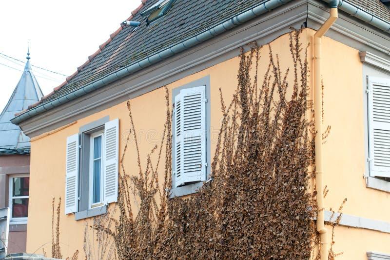 Gammalt stenhus för fransk provencal stil med träslutare royaltyfria foton