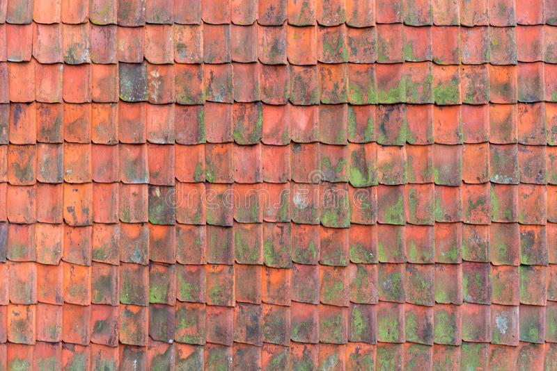 Gammalt tak som täckas med redroof som täckas med röda gamla och förstörda tak för tegelplattor, Textur av ett tak med gamla takt royaltyfri bild