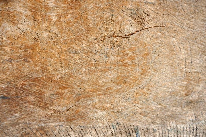 gammalt texturträ för bakgrund arkivbilder