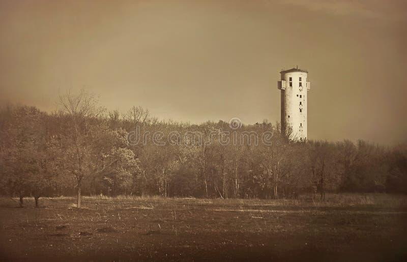 Gammalt torn bak träden royaltyfria foton