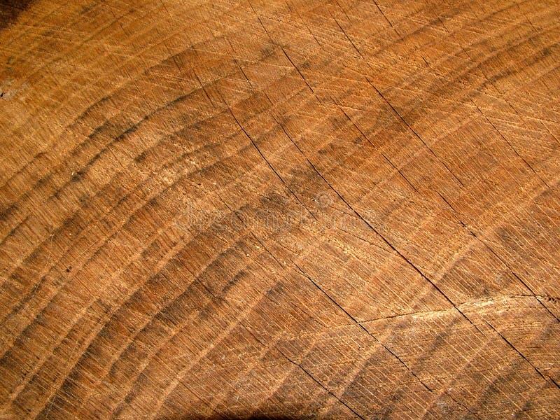 gammalt trä royaltyfria bilder