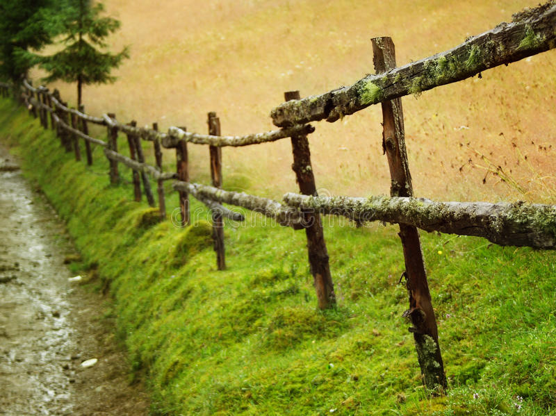 gammalt trä för staket arkivfoton