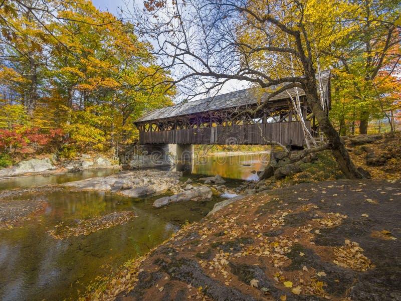 Gammalt trä täckt bro royaltyfria bilder