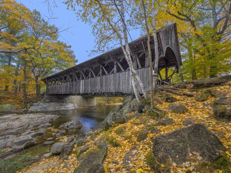 Gammalt trä täckt bro arkivfoto