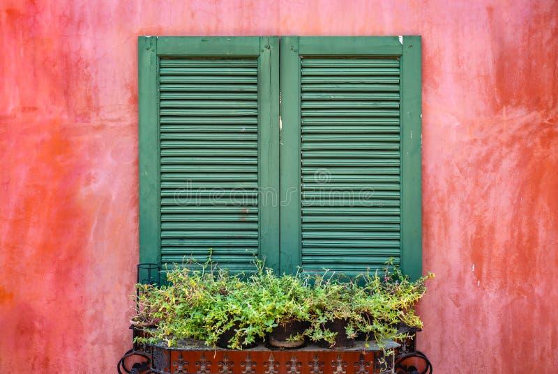 Gammalt träfönster för grön färg på den färgrika röda betongväggen fotografering för bildbyråer