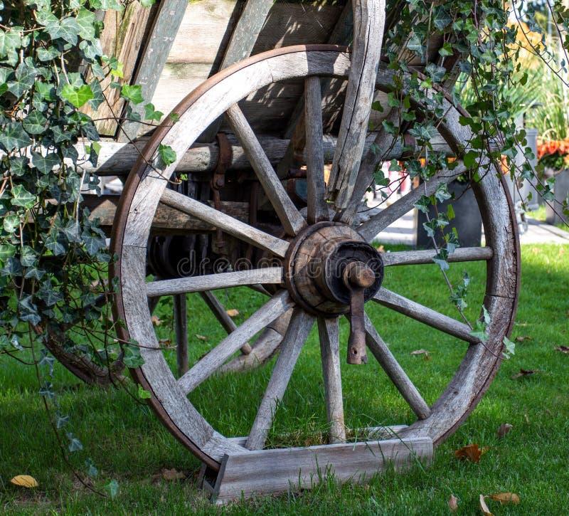 Gammalt trähjul från hästvagnen arkivfoton