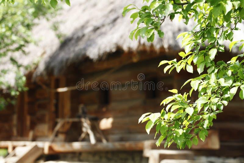 Gammalt trähus, person som tillhör en etnisk minoritet, traditionell konstruktion fotografering för bildbyråer