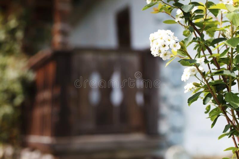 Gammalt trähus, person som tillhör en etnisk minoritet, traditionell konstruktion royaltyfria bilder