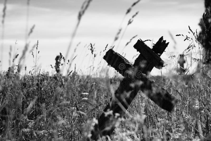 Gammalt träkors på gravstenen bland gräsblad svart white royaltyfri foto