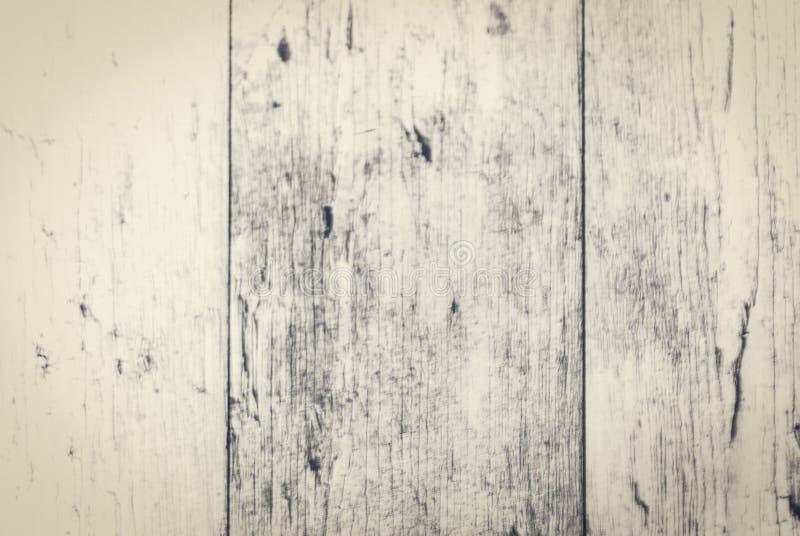 gammalt tr? f?r bakgrund arkivfoto