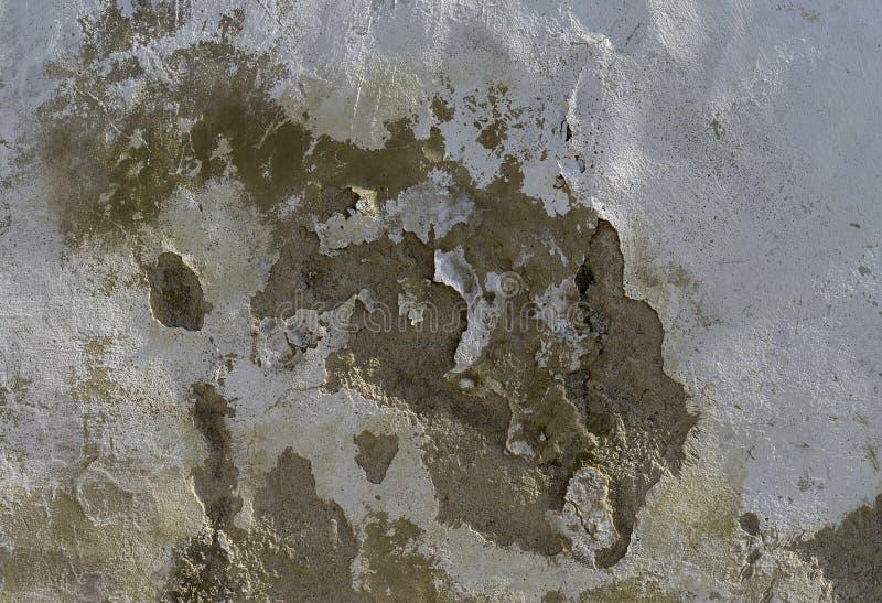 Gammalt väggskadeslut upp arkivfoto