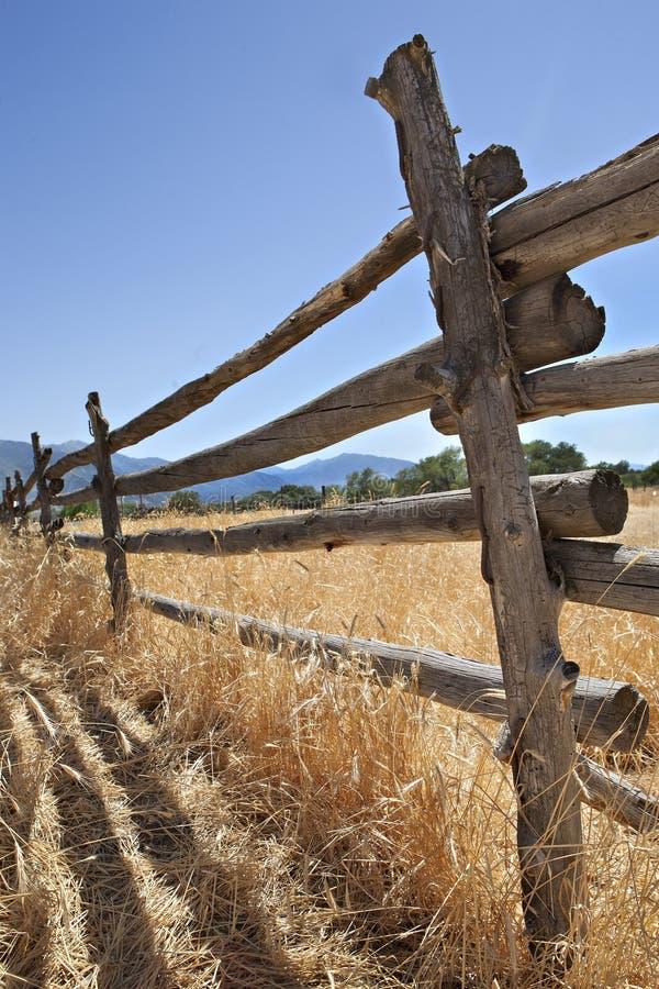 gammalt västra trä för amerikanskt staket royaltyfri bild