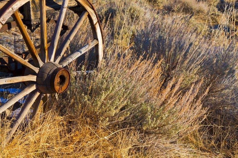 gammalt vagnhjul royaltyfria bilder