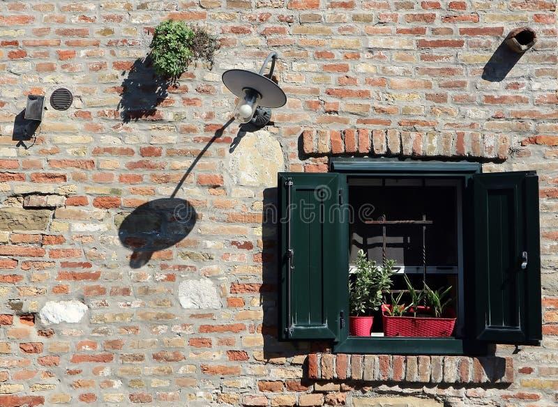 Gammalt venetian fönster på en tegelstenvägg med en krokig lampa, blomkrukor och ogräs arkivbild