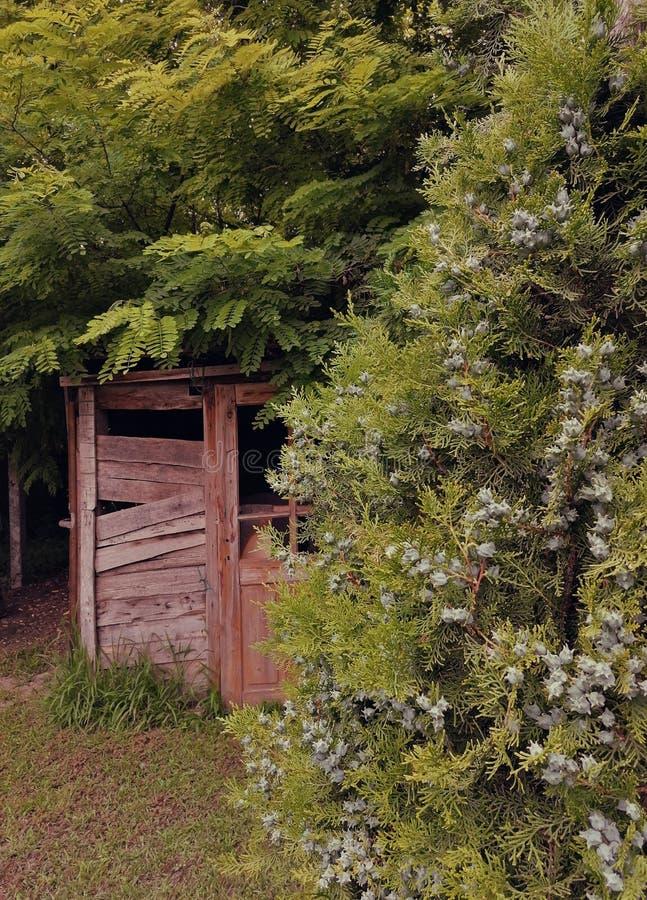 Gammalt ?vergett hus i serbisk by Sydost av Serbien fotografering för bildbyråer