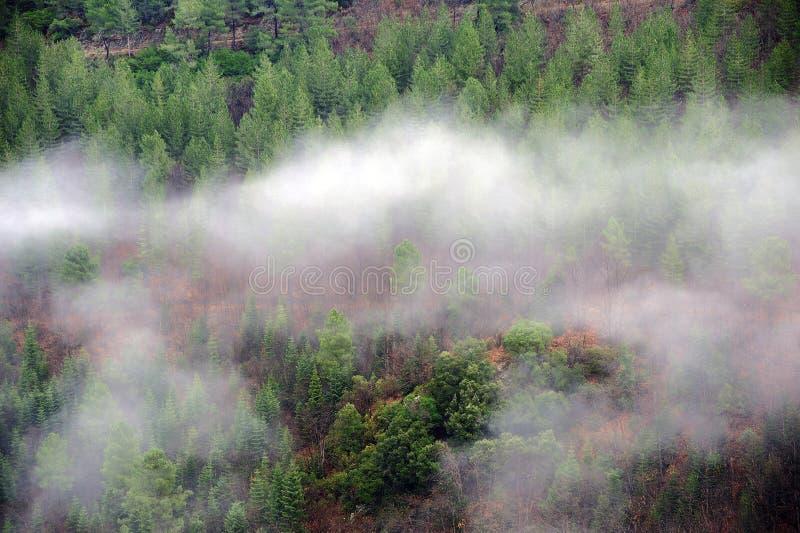 Gamme de montagne de Cevennes photographie stock