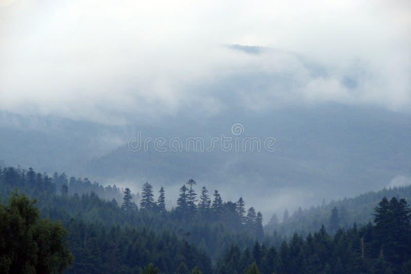 Gamme de montagne de Parascha près de la ville de Skole, région de Lviv l'ukraine Paysages de nature sauvage de montagne au milie photos stock