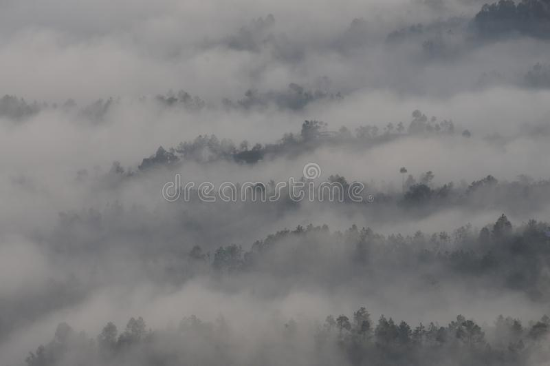 Gamme himalayane come si vede nella mattina a Kausani, India fotografia stock libera da diritti