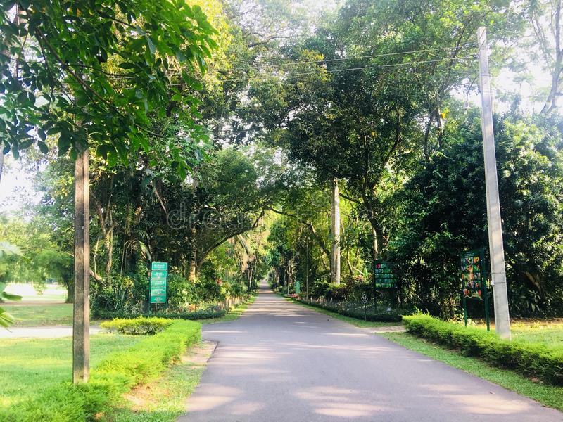 Gampaha green national pack. Gampaha Botanical Garden, also known as Henarathgoda Botanical Garden is situated in the suburb of Gampaha. It was established in stock photography