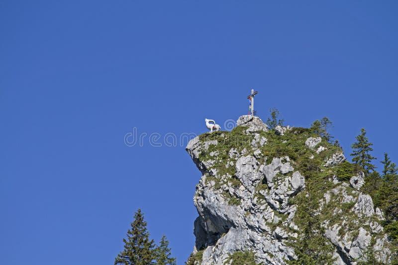 Gamskopf - petit sommet dans la région de Brauneck image stock