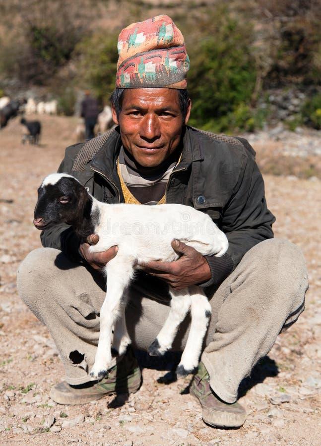Ganadero con las ovejas con el sombrero típico del nepali en la cabeza imagen de archivo libre de regalías
