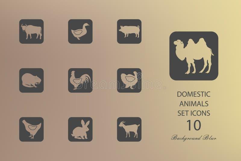 Ganado y aves de corral Sistema de iconos planos en fondo borroso stock de ilustración